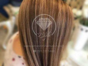 hair_Color7
